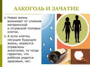 Алкоголь и зачатие