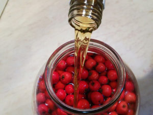 Несколько рецептов лечебной настойки из боярышника на водке. Как сделать настойку в домашних условиях, чем полезен боярышник