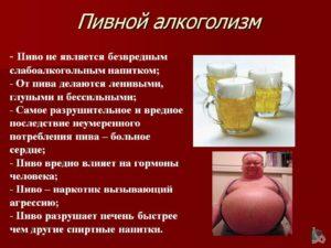 Употребление пива каждый день: к чему приводит и вредит здоровью