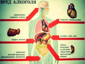 Вред алкоголя для организма человека, видео