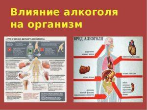 Влияние алкоголя на организм: вред, последствия