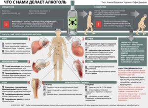 Химия опьянения: как происходит воздействие алкоголя на организм человека