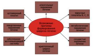 Вирус ассоциированный цирроз печени: современная классификация