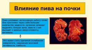 Алкоголь и пиелонефрит: последствия