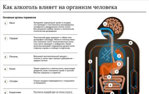 Влияние алкоголя на организм человека, как алкоголь влияет на органы