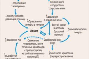 Цирроз печени: клиника, этиология, патогенез