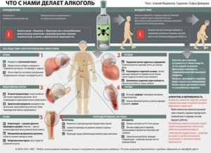 Как происходит опьянение организма от алкоголя