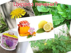 Лечение цирроза печени народными средствами, рецепты